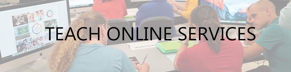 TEACH Online Services